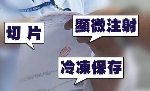 林志玲做试管婴儿?至少已花40万新台币