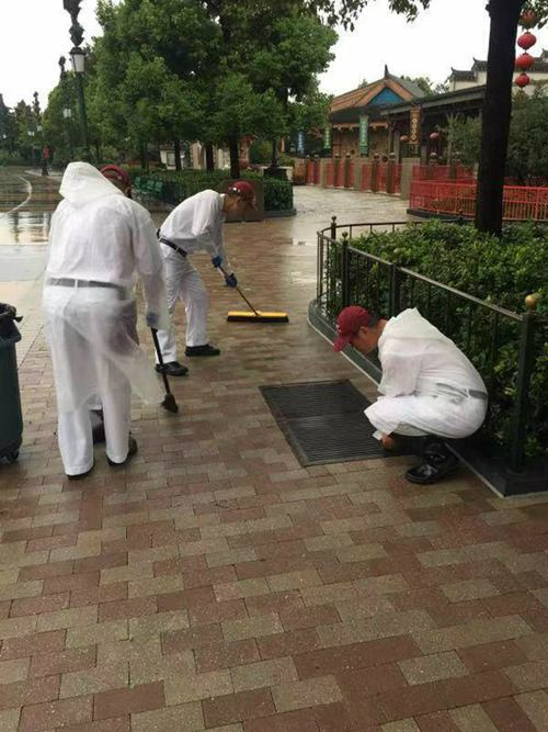 """上海迪士尼闭园 迎战台风""""利奇马"""""""
