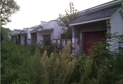舞钢市一社区多户村民住宅变危房 疑因中加集团一矿区放炮采矿所致