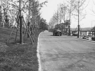 郑州贾鲁河畔堤顶道路将来禁止社会车辆通行?市民有异议