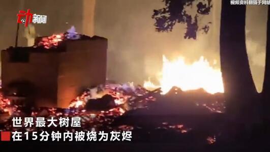 世界最大树屋被烧 花费12年建成 却在15分钟内烧为灰烬