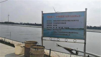http://www.xqweigou.com/dianshanglingshou/80587.html