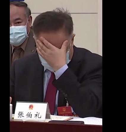 审议现场人大代表张伯礼哭了