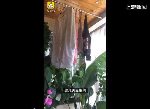 """神仙阳台房主衣服晾1个月未干空气潮湿""""仙气""""太足"""