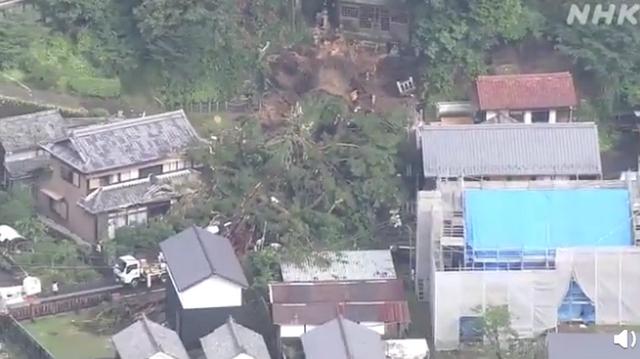 日本千年神树因大雨连根倒地 曾是当地人的心愿寄托