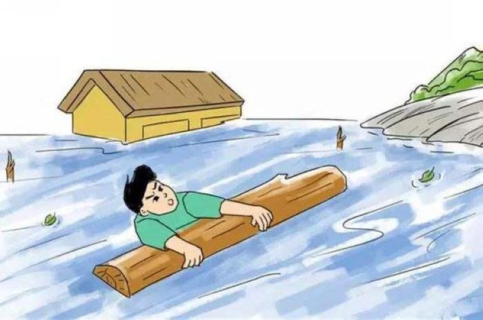 江西暴雨近百只老鼠都到凉亭内躲洪水 洪水来了,到底怎么自救才最科学?