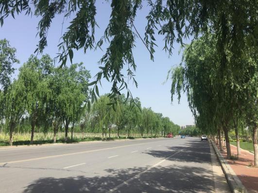 河南杞县:路通了,日子越过越有奔头了!