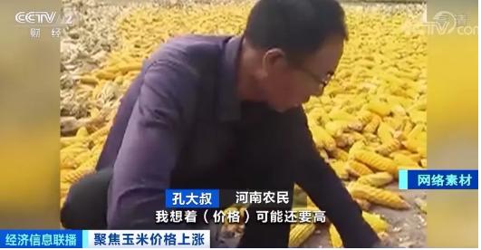 玉米价格每吨涨上千元,创4年来新高